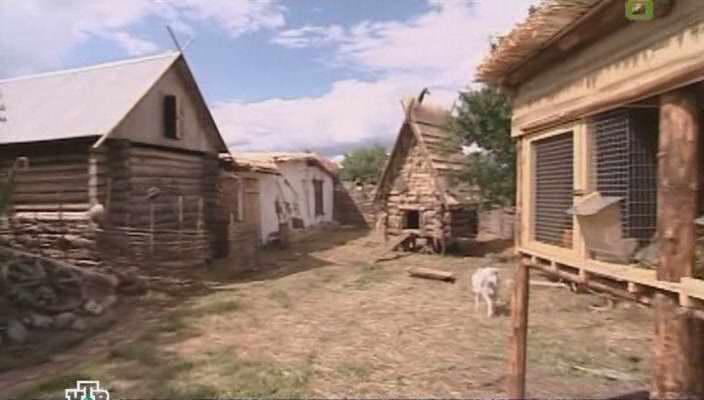 Как построить скотный двор своими руками 97